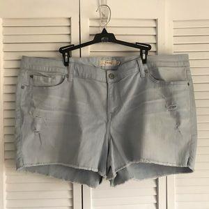 Torrid distressed shorts